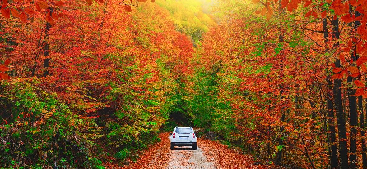 LPG'li aracınızla keyifli bir hafta sonu için sonbahar rotaları  